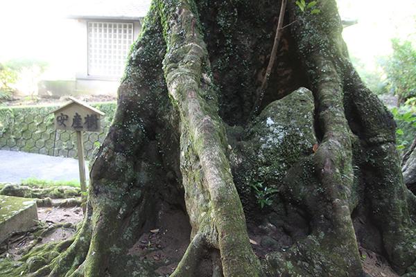 神内神社2